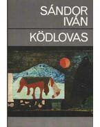 Ködlovas - Sándor Iván