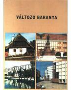 Változó Baranya - Sándor László, Antal Gyula