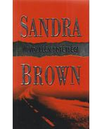 Üdvözlégy, sötétség! - Sandra Brown