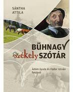 Bühnagy székely szótár - Sántha Attila