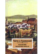 Város a Szamosnál - Sas Péter