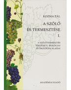A szőlő és termesztése I. - Kozma Pál
