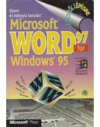 Microsoft Word 97 for Windows 95 - Schlosser Tamás