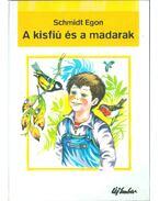 A kisfiú és a madarak - Schmidt Egon