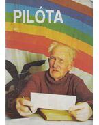 Pilóta 93/1 - Schrank-Ambrus Sándor