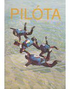 Pilóta 93/3 - Schrank-Ambrus Sándor