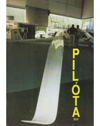 Pilóta 93/5 - Schrank-Ambrus Sándor