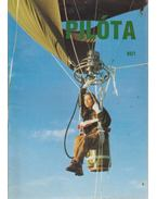 Pilóta 93/7 - Schrank-Ambrus Sándor