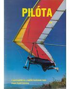 Pilóta 93/8 - Schrank-Ambrus Sándor