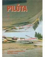 Pilóta 95/5 - Schrank-Ambrus Sándor