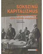 Sokszínű kapitalizmus - Sebők Marcell (szerk.)