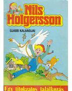Nils Holgersson 1. (Egy titokzatos találkozás) - Selma Lagerlöf