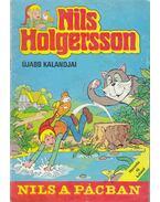 Nils Holgersson újabb kalandjai 2. (Nils a pácban) - Selma Lagerlöf