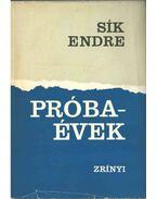 Próbaévek - Sík Endre