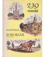 Soroksár - Egy Budapest környéki német nagyközség hontörténeti könyve - Michael Schaffer, Michael Weidinger
