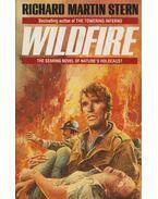 Wildfire - Stern, Richard Martin