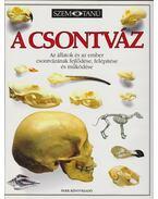 A csontváz - Steve Parker