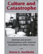 Culture and Catastrophe: German and Jewish Confrontations With National Socialism and Other Crises - Steven E. Aschheim