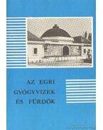 Az egri gyógyvizek és fürdők - Sugár István