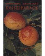Kajszibarack - Surányi Dezső, Nyujtó Ferenc