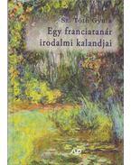 Egy franciatanár irodalmi kalandjai - Sz. Tóth Gyula