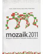 Mozaik 2011 - Magyar fiatalok a Kárpát-medencében - Szabó Andrea szerk., Bauer Béla (szerk.), Pillók Péter szerk.