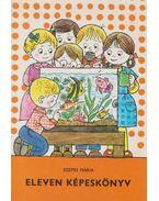 Eleven képeskönyv - Szepes Mária