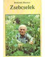 Zsebcselek - Szigeti László, Bohumil Hrabal