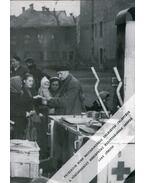 Friedrich Born magyarországi delegátus jelentése a Vöröskereszt Nemzetközi Bizottságának Genfbe 1945 június - Szita Szabolcs