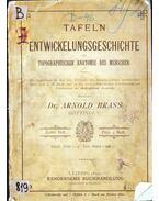 Tafeln zur Entwickelungsgeschichte und topographischen Anatomie des Menschen - Arnold Brass