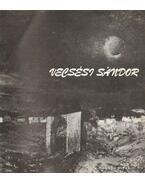 Vecsési Sándor festőművész kiállítása 1983 - Tasnádi Attila