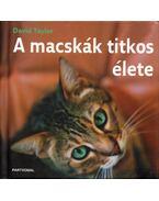 A macskák titkos élete - Taylor, David