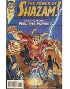 The Power of Shazam! 1. - Krause, Peter, Manley, Mike, Ordway, Jerry
