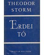Erdei tó - Theodor Storm