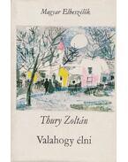 Valahogy élni - Thury Zoltán
