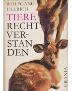 Tiere -  recht verstanden - Ullrich, Wolfgang