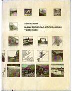 Magyarország közútjainak története - Tóth László