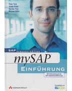MySAP R/3 - Einführung - Türk, Peter, Gratzl, Gisela, Petri, Karsten, Vetter, Michael
