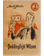 Puddingfejű Wilson - Twain, Mark