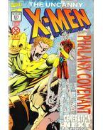 Uncanny X-Men Vol. 1 No. 317 - Lobdell, Scott, Madureira, Joe
