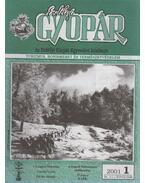 Erdélyi Gyopár 2001/1 - Váradi István