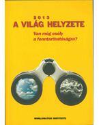 A világ helyzete 2013 - Varga Éva (szerk.)