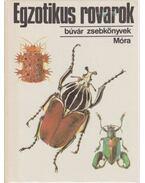 Egzotikus rovarok - Vásárhelyi Tamás