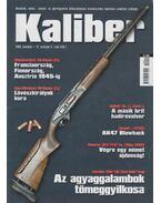Kaliber 2009. november (139.) - Vass Gábor