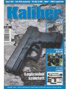 Kaliber 2013. szeptember - Vass Gábor