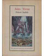 Fekete indiák - Verne Gyula