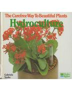 The Carefree Way To Beautiful Plants - Hydroculture - Vocke, Gabriele