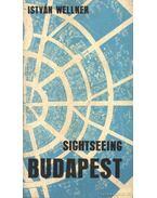 Sightseeing Budapest - Wellner István