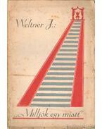 Milljók egy miatt - Weltner Jakab