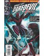 What if? Daredevil VS. Elektra No. 1. - Karl Bollers, Kayanan, Rafael